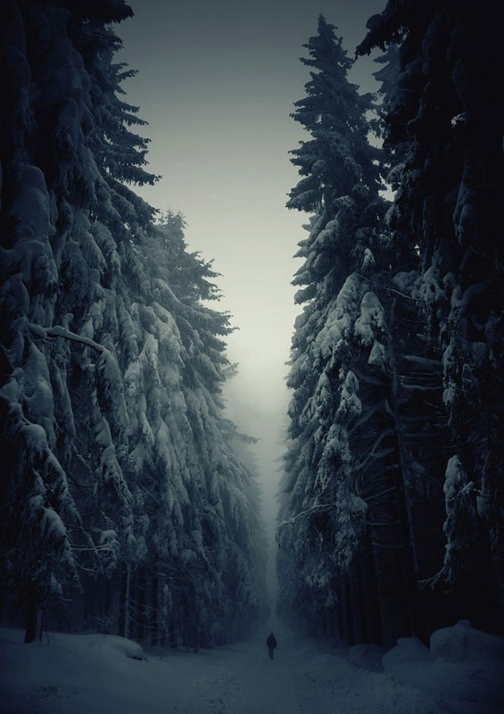 zima7