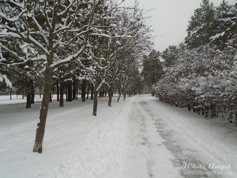 Slavutich-gorod-belogo-angela-zima3