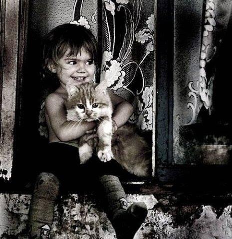 Хитрый кот...(Добрые истории из жизни добрых людей.)