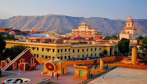 rozoviy-dgaypur