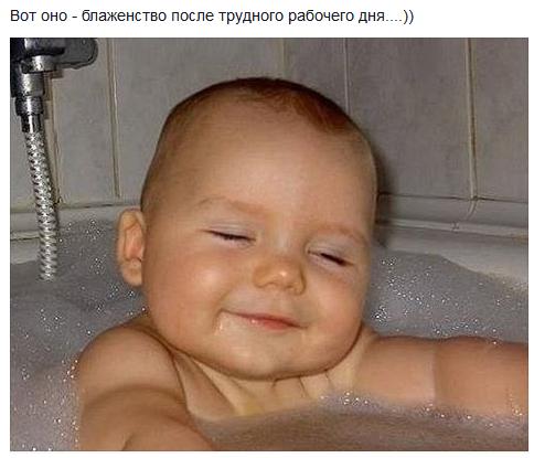 foto-dnya